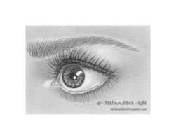 mini eye