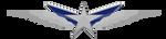 Star badge by Vandagen