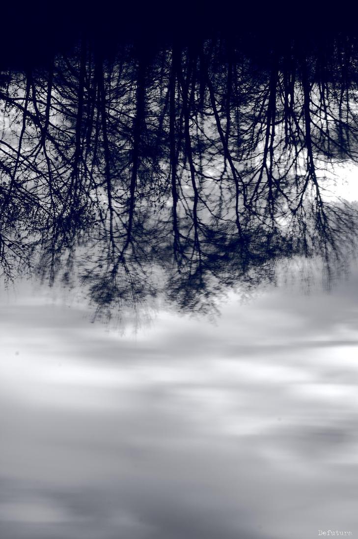 Windy by DeFutura