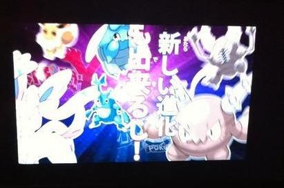 RUMOR: Heracross and Pinsir Pre-Evolution : pokemon