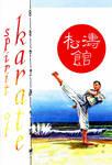 Shotokan: Spirit of Karate