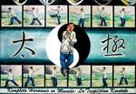 The Taiji State of Mind