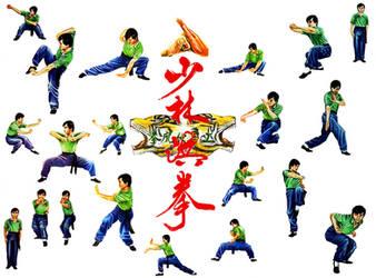 Shaolin Tiger Style by AlixLeedotcom