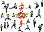 Shaolin Tiger Style