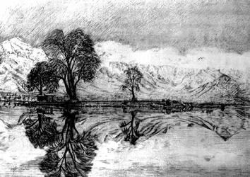 Dal Lake Reflections by AlixLeedotcom