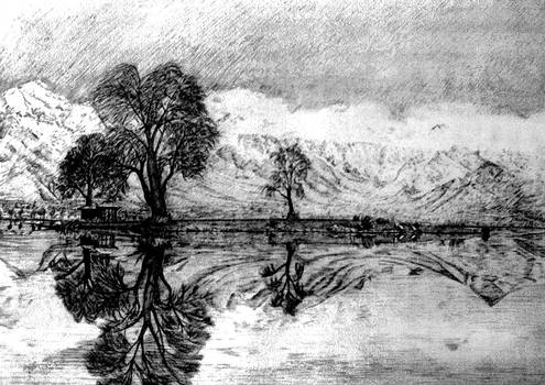 Dal Lake Reflections