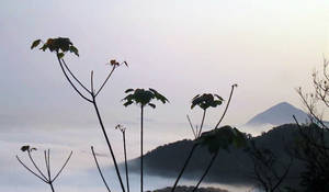 View from Longmenshan