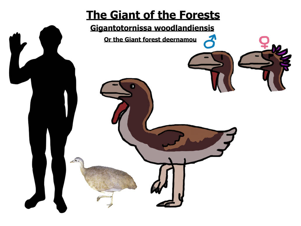 The Lost World fauna: the Giant forest deernamou