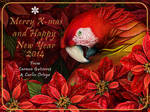 Noche buena and scarlet macaw