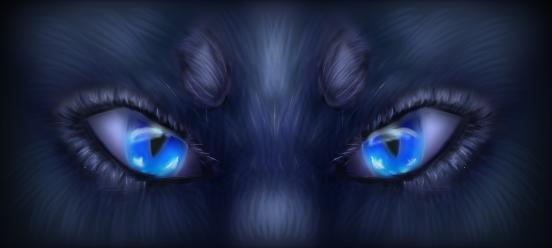 Bluestar by Xx-Half-M00n-xX
