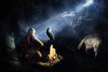 Under Moon Light