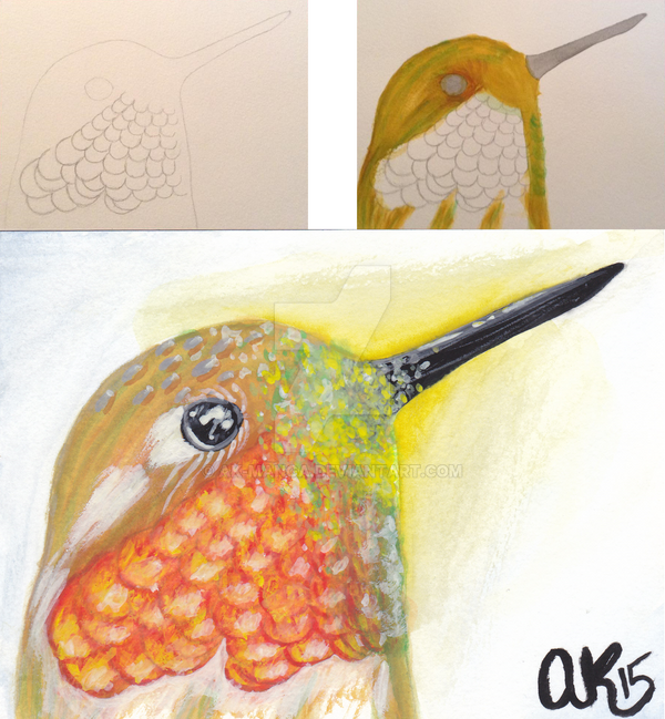 My first watercolor ruby throated hummingbird by ak for My first watercolor painting