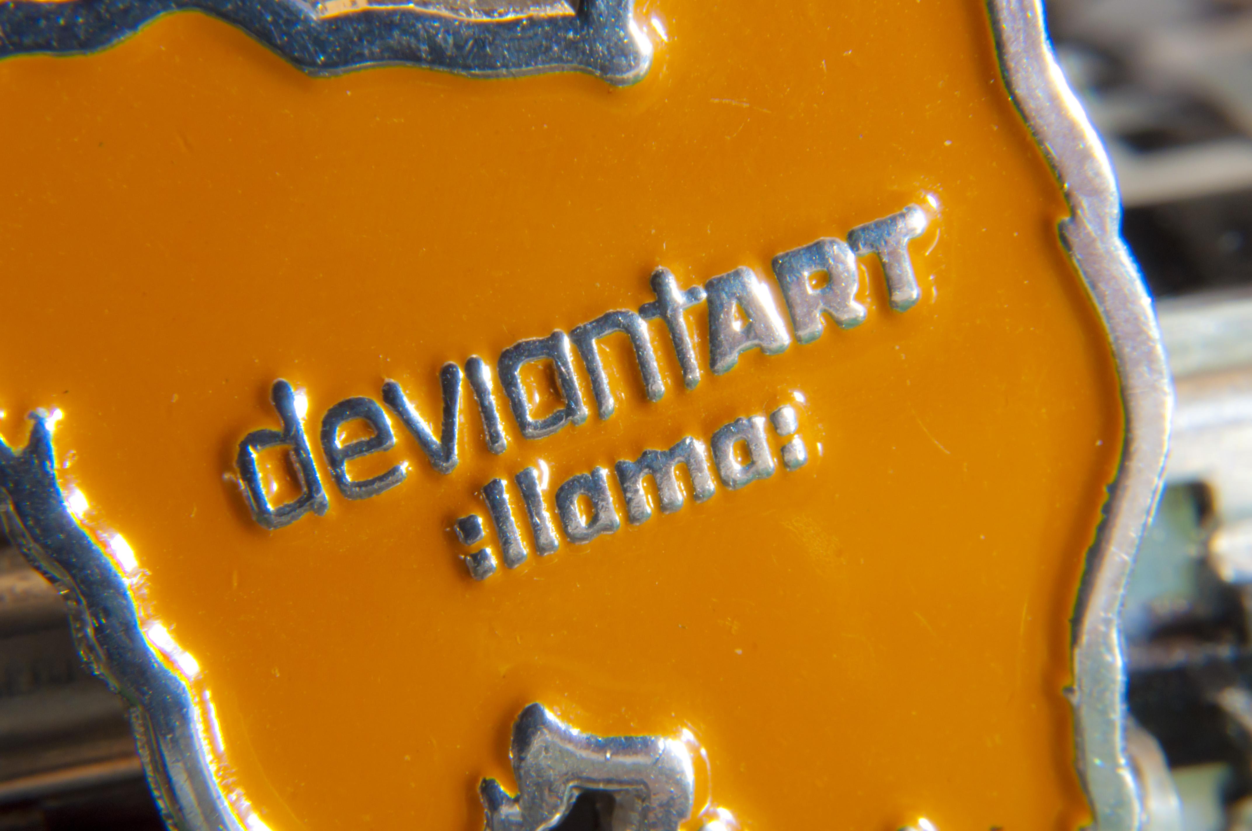 DA Llama Key Chain by astrant82