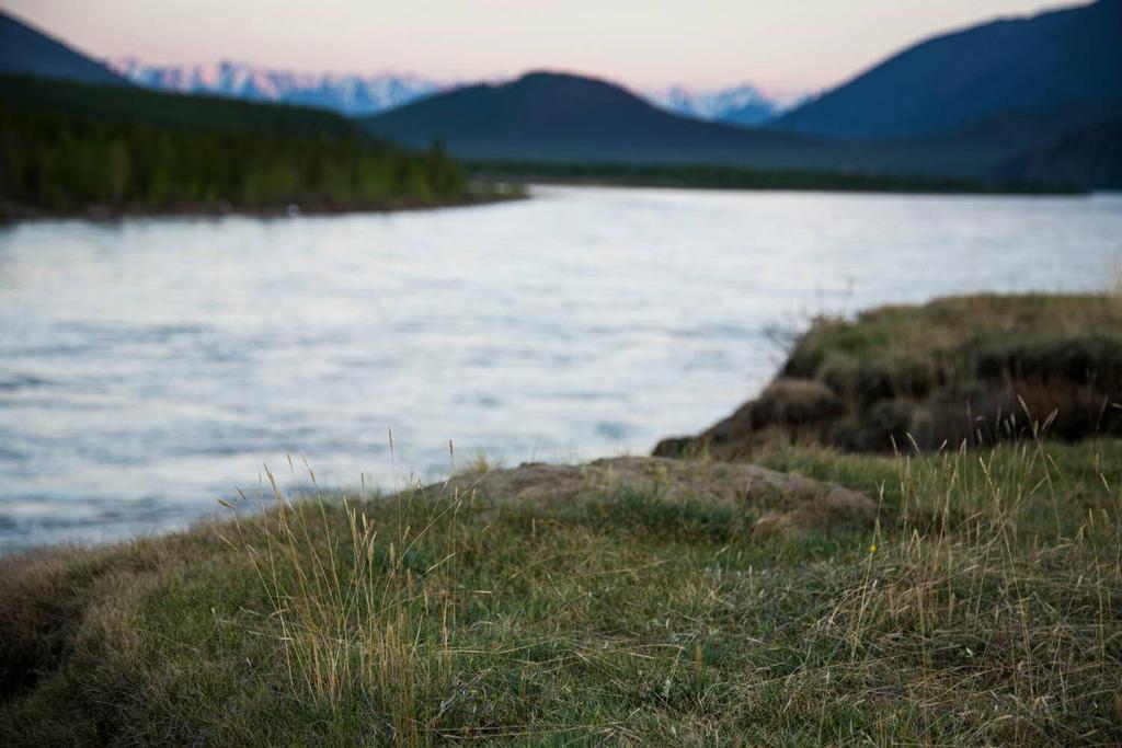 #sea #grass by badshaphotographer
