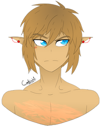 Art Trade: Boxer Link by cookiejo1