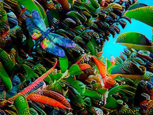 Dragonfly (v.1.6)