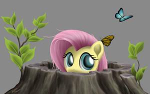 Peek - Fluttershy by SymbianL