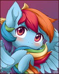 Fluffy Filly Dashie