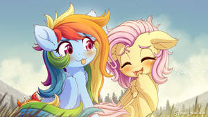 Flutters and Dash Haircut
