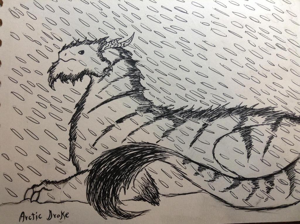 Arctic Drake by dmorgathal