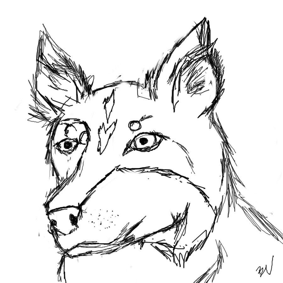 Border collie sketch by doublevision107 on deviantart for Border collie coloring pages