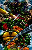 teenage mutant ninja turtles by ultramegahyperbeam