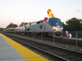 Ponies and an Amtrak by statoose
