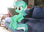 Lyra On My Couch