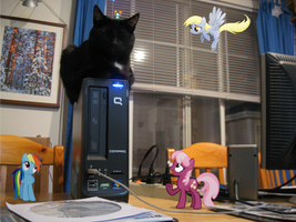 Uh, why's the cat sleeping on the PC? by statoose