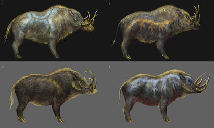 Boar Sketches 2 by yefumm