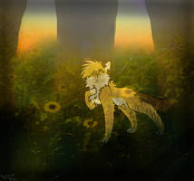 Sunflower Dream .:AT:. by starii-flames