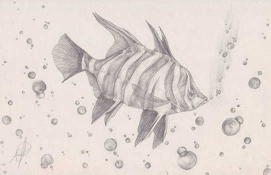 The Otherfish