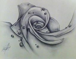 Rose 07 by Michelle-Kowalczyk