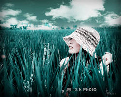 MiAo by mmxdadilou