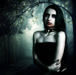 Vampire Beauty XIX