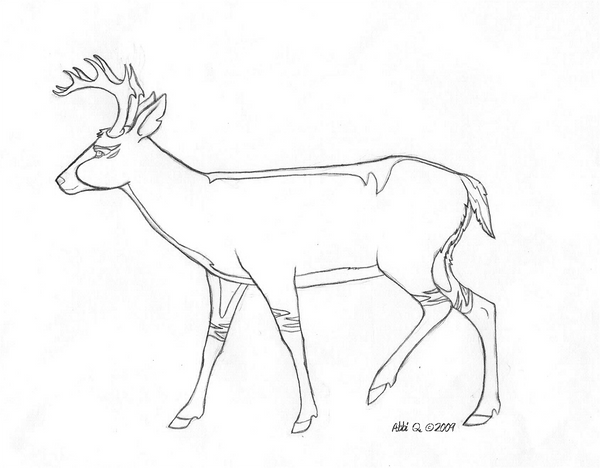 Line Drawing Deer : Deer character lineart by epiphany on deviantart