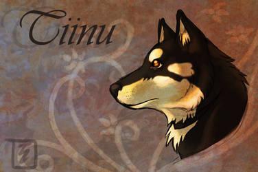 Tiinu
