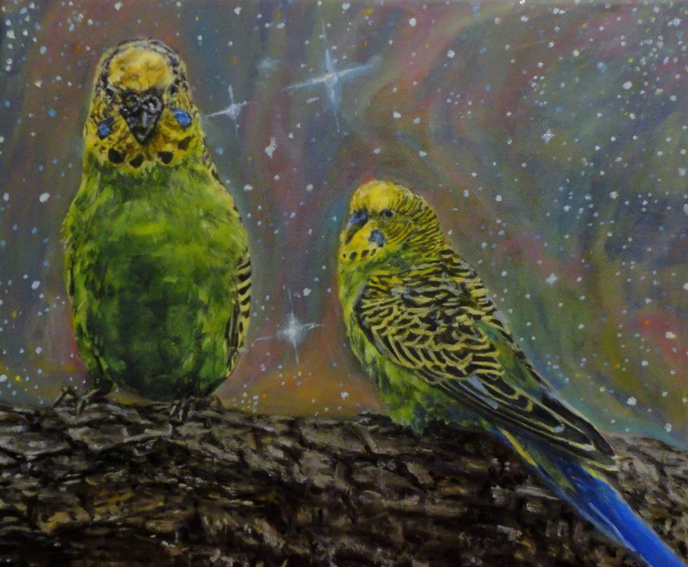 Parakeets by DalilaT
