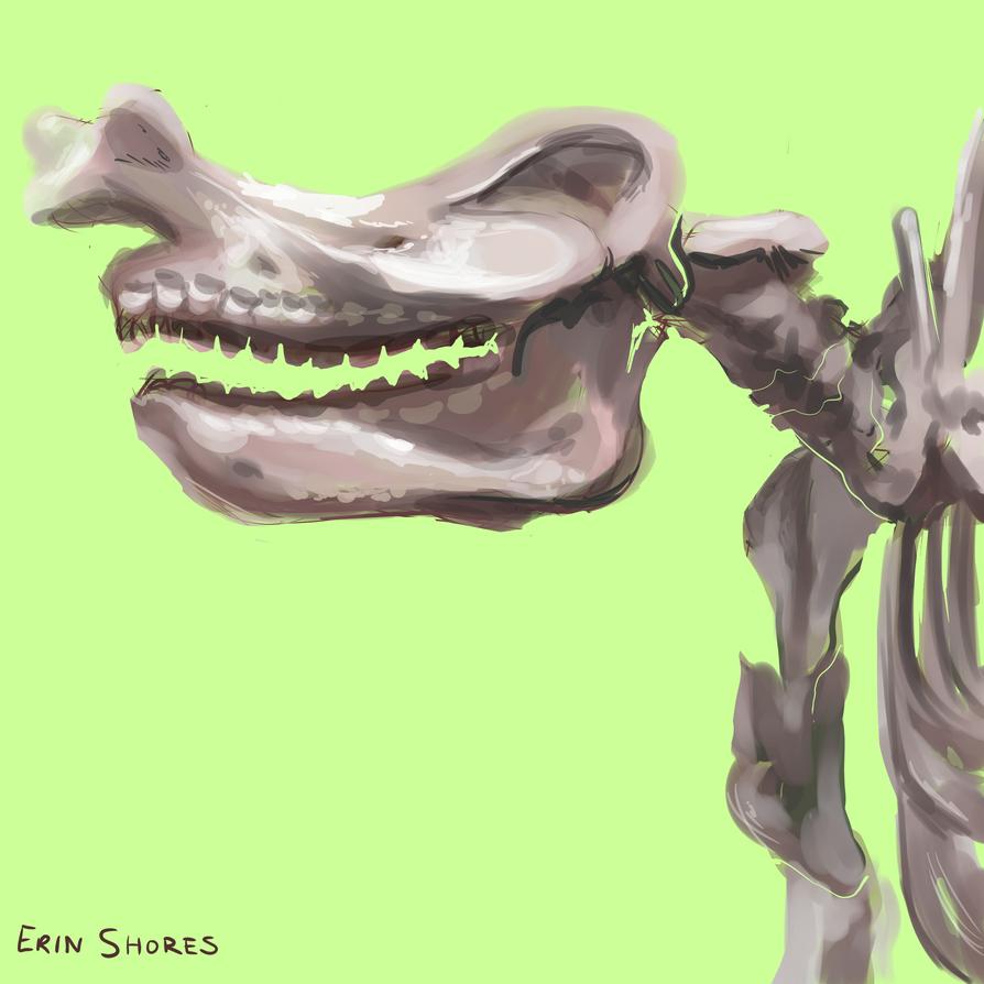 Skeletons of Fun by Beachpie