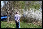 Treepass
