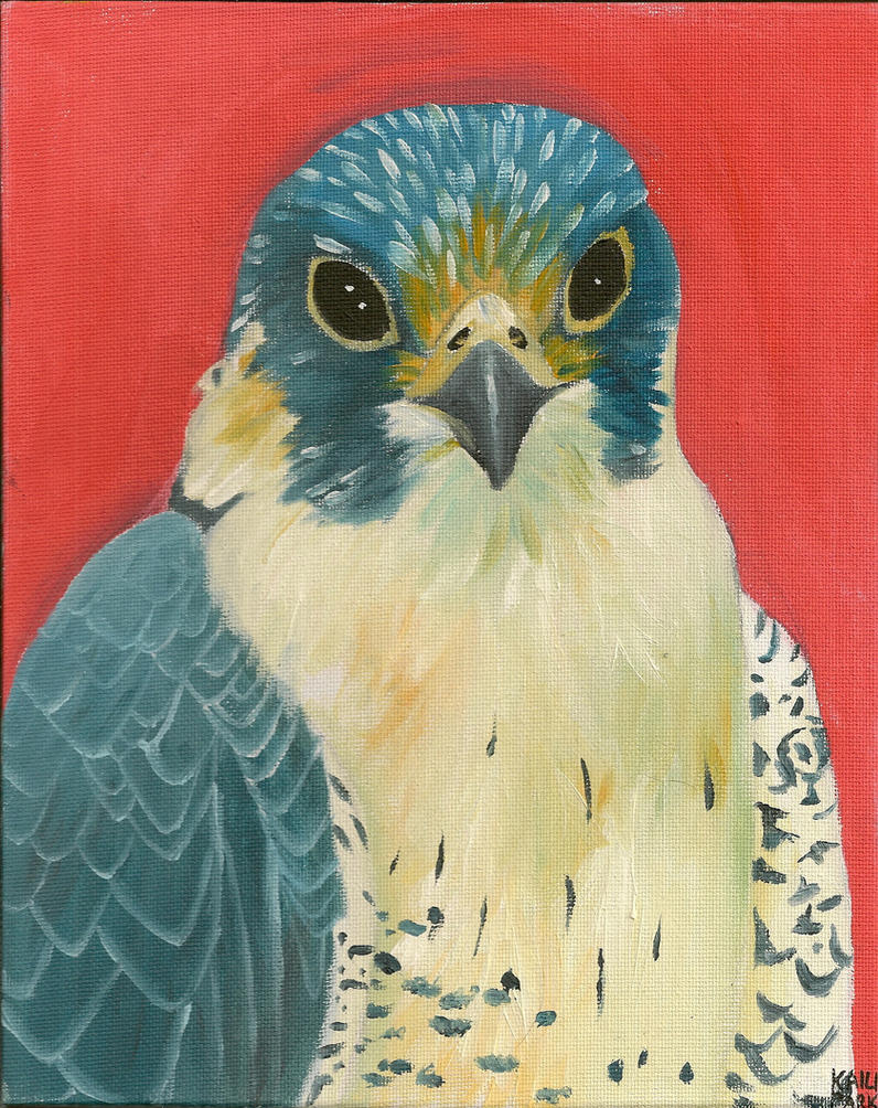 Peregrine by BlackSeaFoam