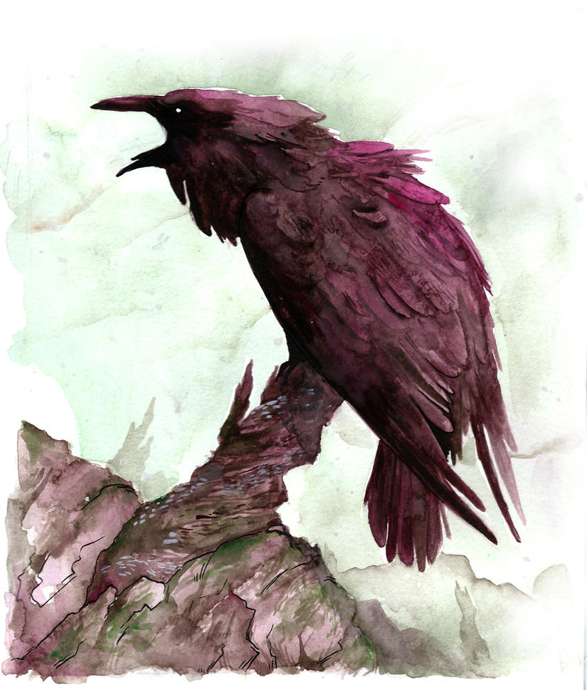 Don't follow the raven by BlackSeaFoam