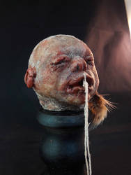 Baby shrunken head