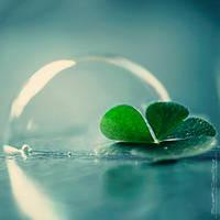 Lucky Bubble