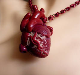 Shifted Human Heart Necklace by Divulged