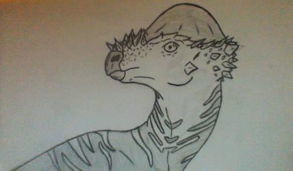 Pachycephalosaurus Face