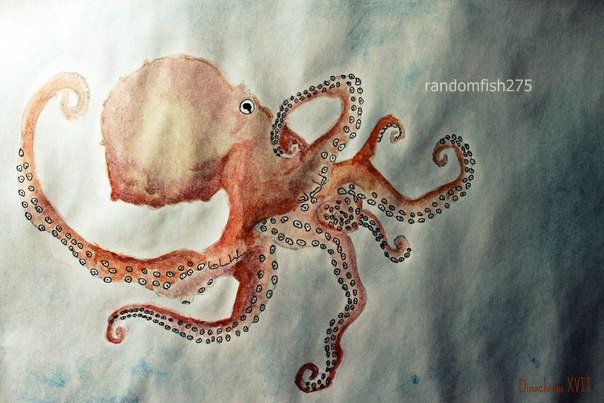 Octopus by randomfish275