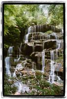 Yellow Branch Falls by mastermayhem