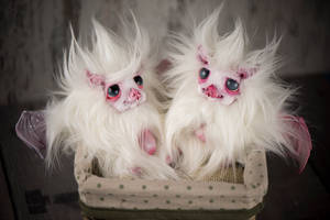 Polar Bats to adopt