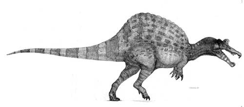 Spinosaurus by Monopteryx